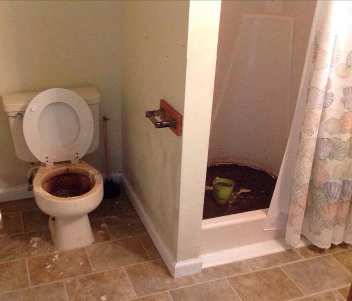 Shower and Toilet with Sewage Back Up