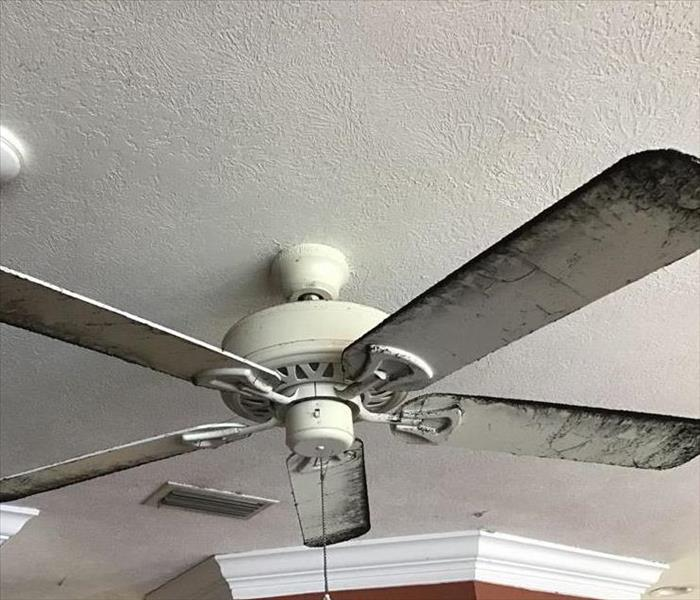 Ceiling Fan with Soot Coverage