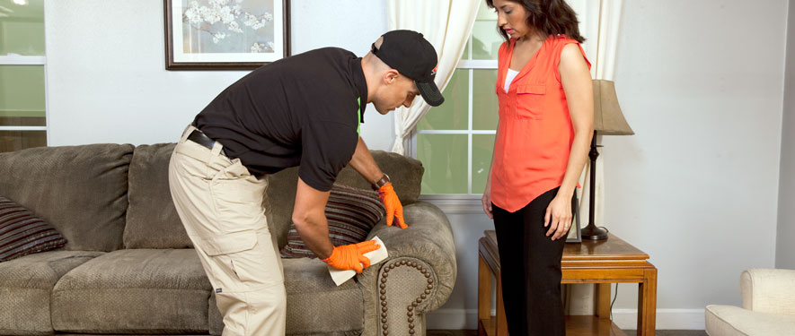 Pensacola, FL carpet upholstery cleaning